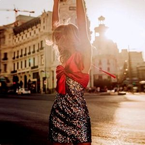NWT Zara Sequin Mini Dress With Bow